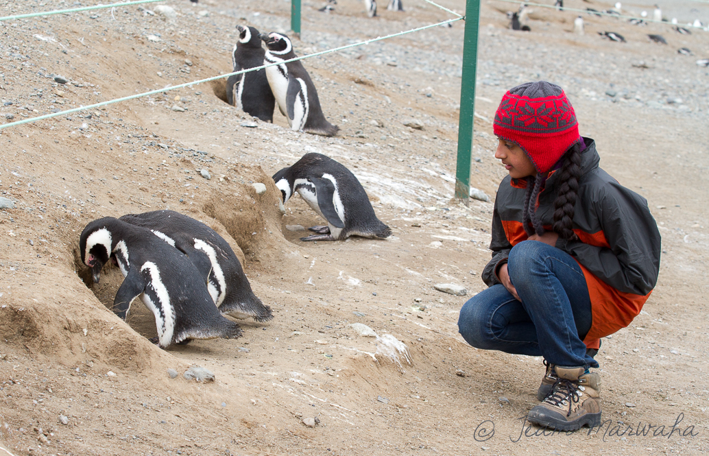 a girl sitting next to the penguins