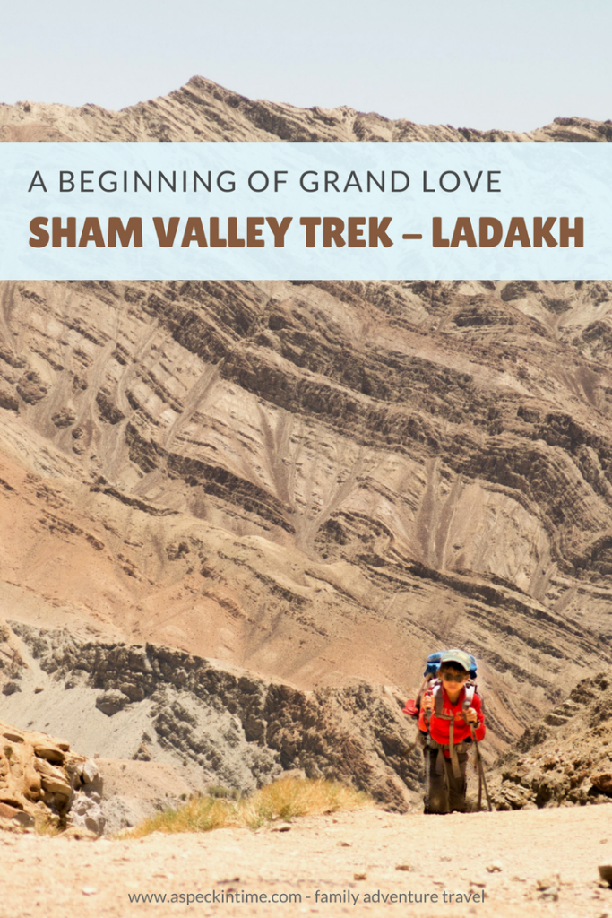 sham valley trek, ladakh, family adventure travel