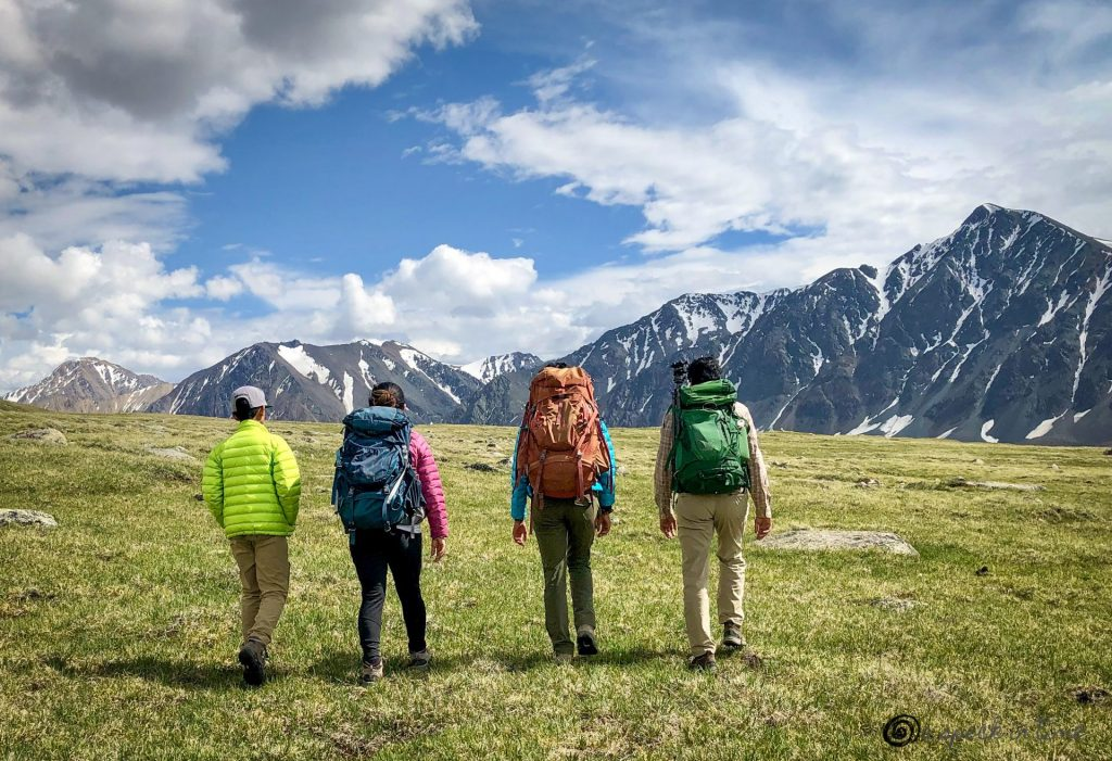 four hikers walking with backpacks on grassy meadow with snow covered mountains in the backdrop