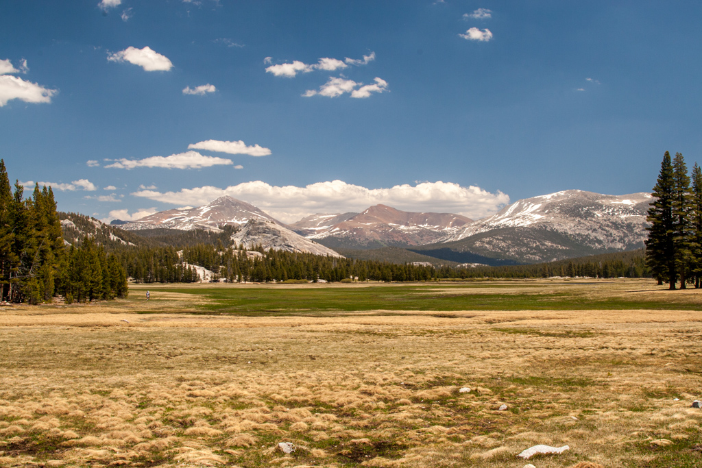 yosemite national park Tuolumne Meadows less crowded national parks
